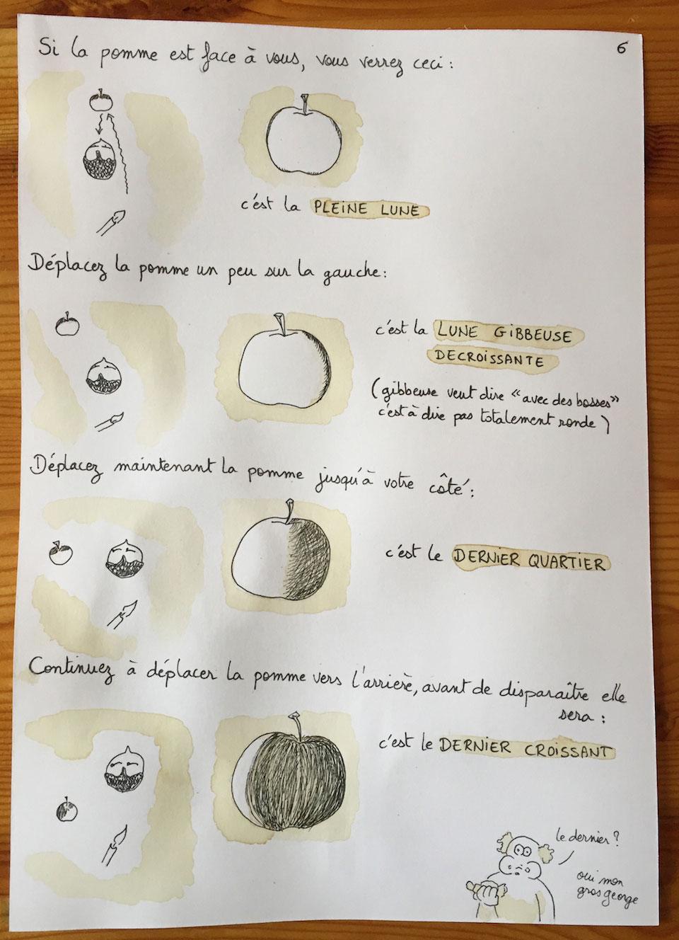 Influence des phases de la lune sur les naissances
